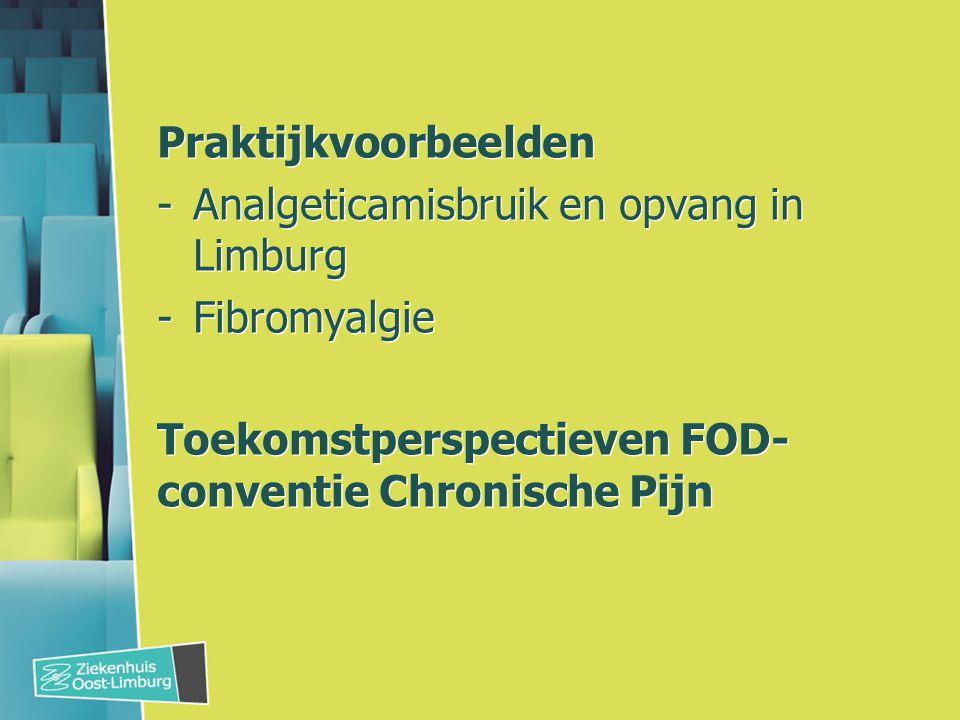 Praktijkvoorbeelden -Analgeticamisbruik en opvang in Limburg -Fibromyalgie Toekomstperspectieven FOD- conventie Chronische Pijn Praktijkvoorbeelden -Analgeticamisbruik en opvang in Limburg -Fibromyalgie Toekomstperspectieven FOD- conventie Chronische Pijn