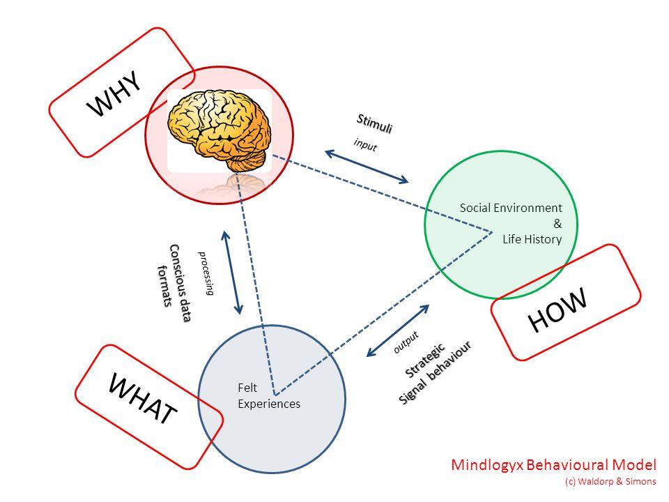 Adapted Mind Strategic Signal behaviour Social Environment & Life History Mindlogyx Behavioural Model (c) Waldorp & Simons input processing output Felt Experiences Conscious data formats Stimuli WHY WHAT HOW