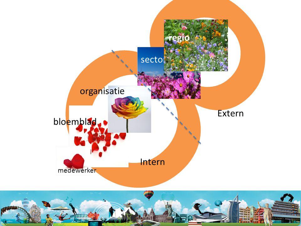 8 sector regio bloemblad organisatie medewerker Intern Extern