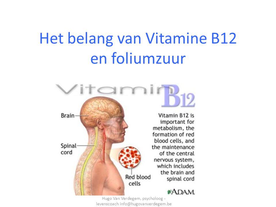 Het belang van Vitamine B12 en foliumzuur Hugo Van Verdegem, psycholoog - levenscoach info@hugovanverdegem.be