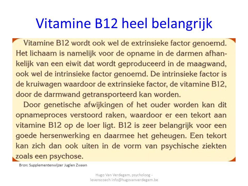 Nog voordelen van Vit B12 Bron: Supplementenwijzer Juglen Zwaan Hugo Van Verdegem, psycholoog - levenscoach info@hugovanverdegem.be