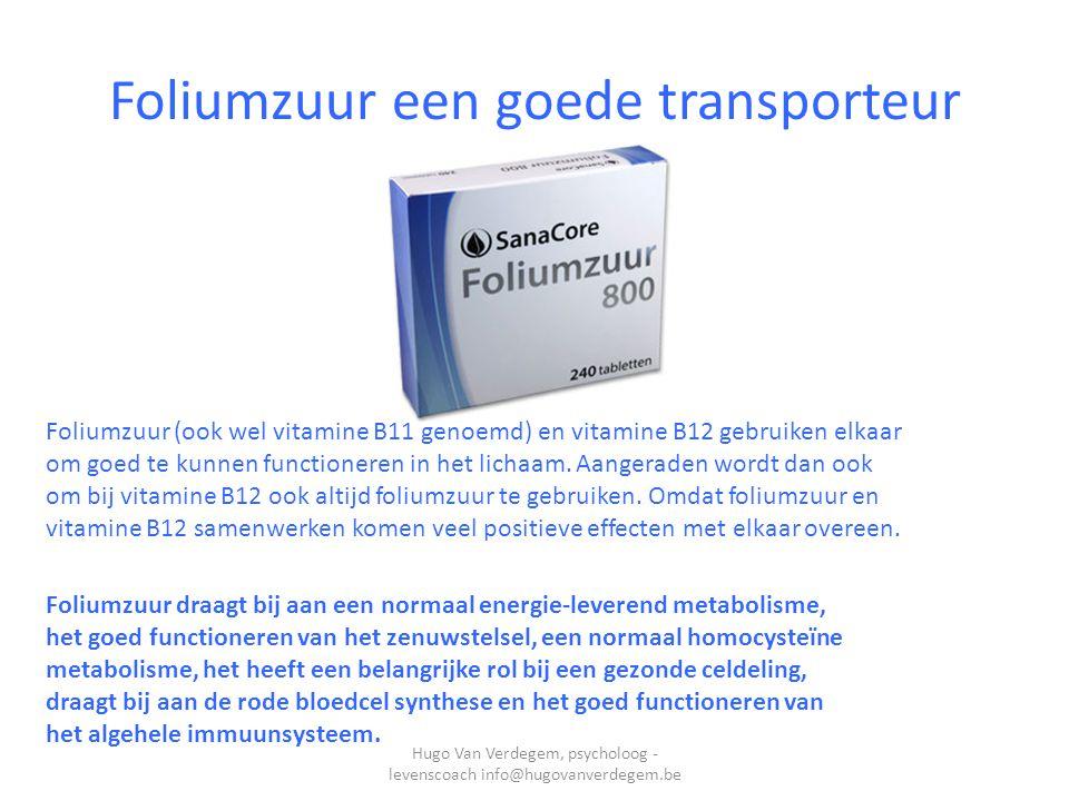 Foliumzuur een goede transporteur Foliumzuur (ook wel vitamine B11 genoemd) en vitamine B12 gebruiken elkaar om goed te kunnen functioneren in het lichaam.