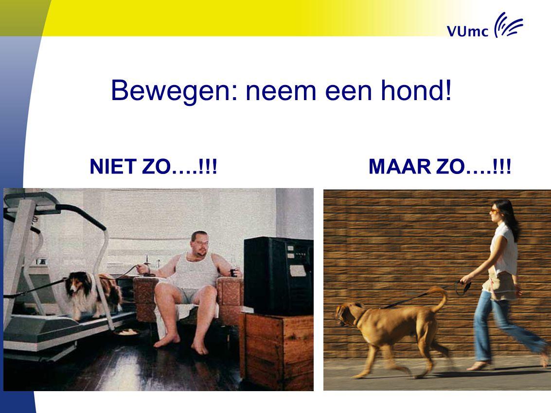 Bewegen: neem een hond! NIET ZO….!!!MAAR ZO….!!!