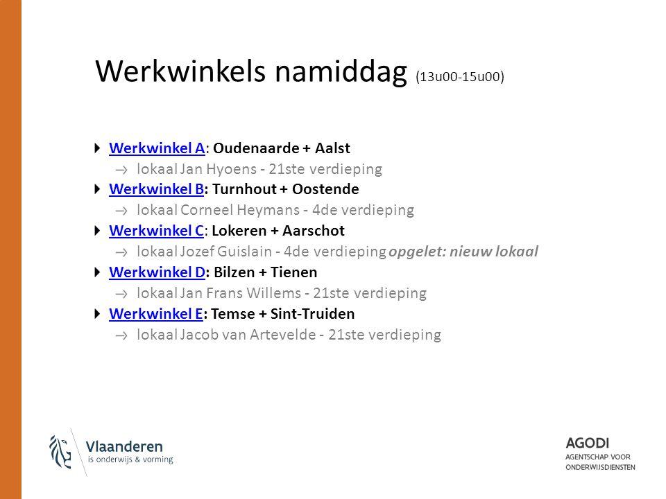 Werkwinkels namiddag (13u00-15u00) Werkwinkel AWerkwinkel A: Oudenaarde + Aalst lokaal Jan Hyoens - 21ste verdieping Werkwinkel BWerkwinkel B: Turnhou
