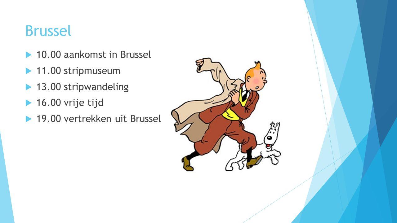 Brussel  10.00 aankomst in Brussel  11.00 stripmuseum  13.00 stripwandeling  16.00 vrije tijd  19.00 vertrekken uit Brussel