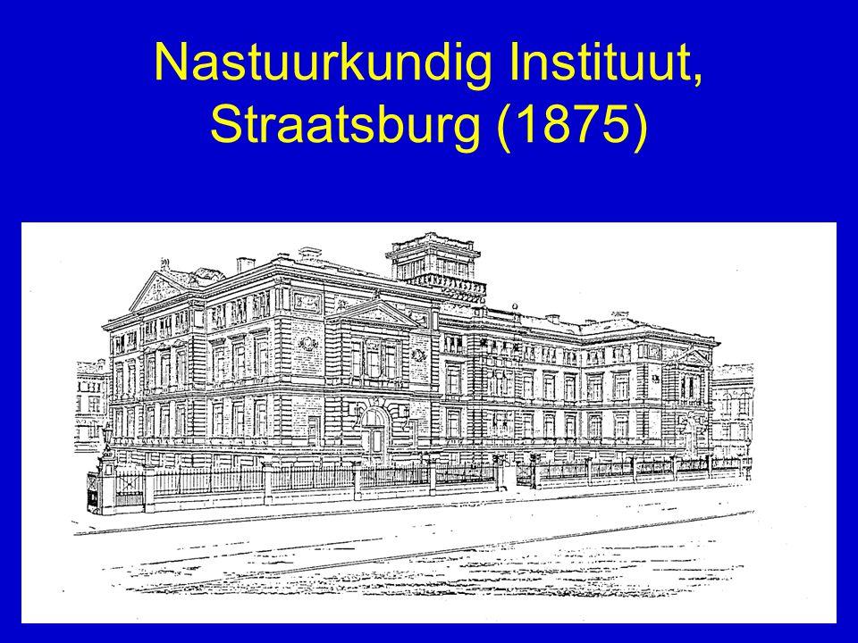 Nastuurkundig Instituut, Straatsburg (1875)
