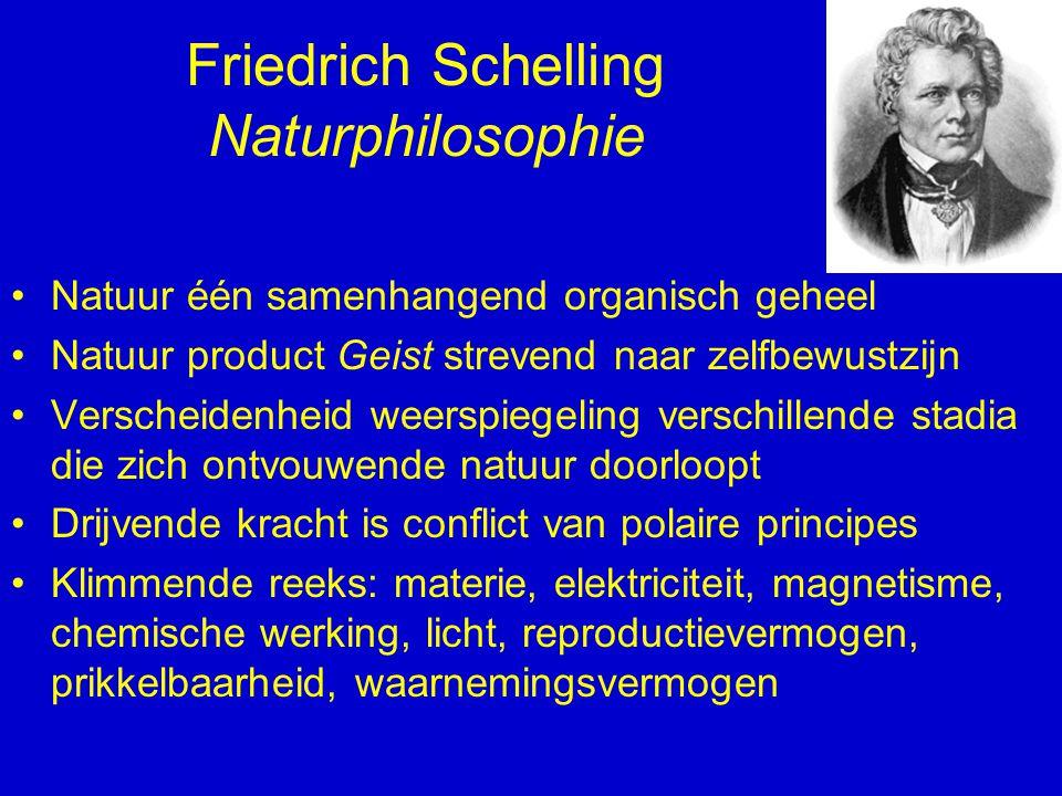 Friedrich Schelling Naturphilosophie Natuur één samenhangend organisch geheel Natuur product Geist strevend naar zelfbewustzijn Verscheidenheid weersp
