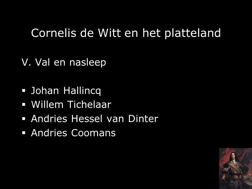 Cornelis de Witt en het platteland V.