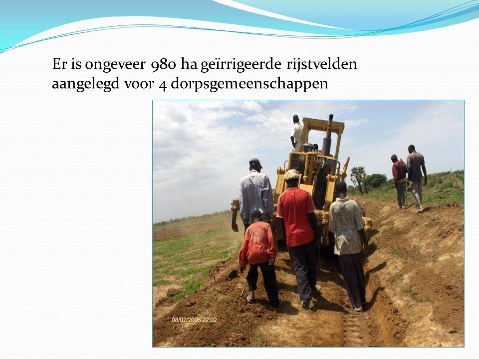 Er is ongeveer 980 ha geïrrigeerde rijstvelden aangelegd voor 4 dorpsgemeenschappen