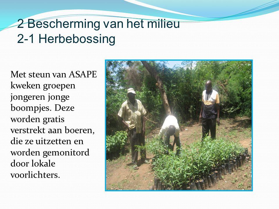 Met steun van ASAPE kweken groepen jongeren jonge boompjes. Deze worden gratis verstrekt aan boeren, die ze uitzetten en worden gemonitord door lokale