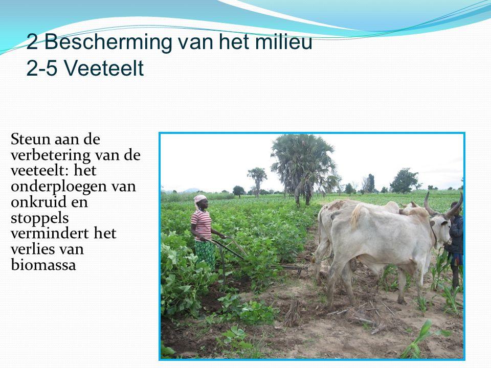 Steun aan de verbetering van de veeteelt: het onderploegen van onkruid en stoppels vermindert het verlies van biomassa 2 Bescherming van het milieu 2-5 Veeteelt