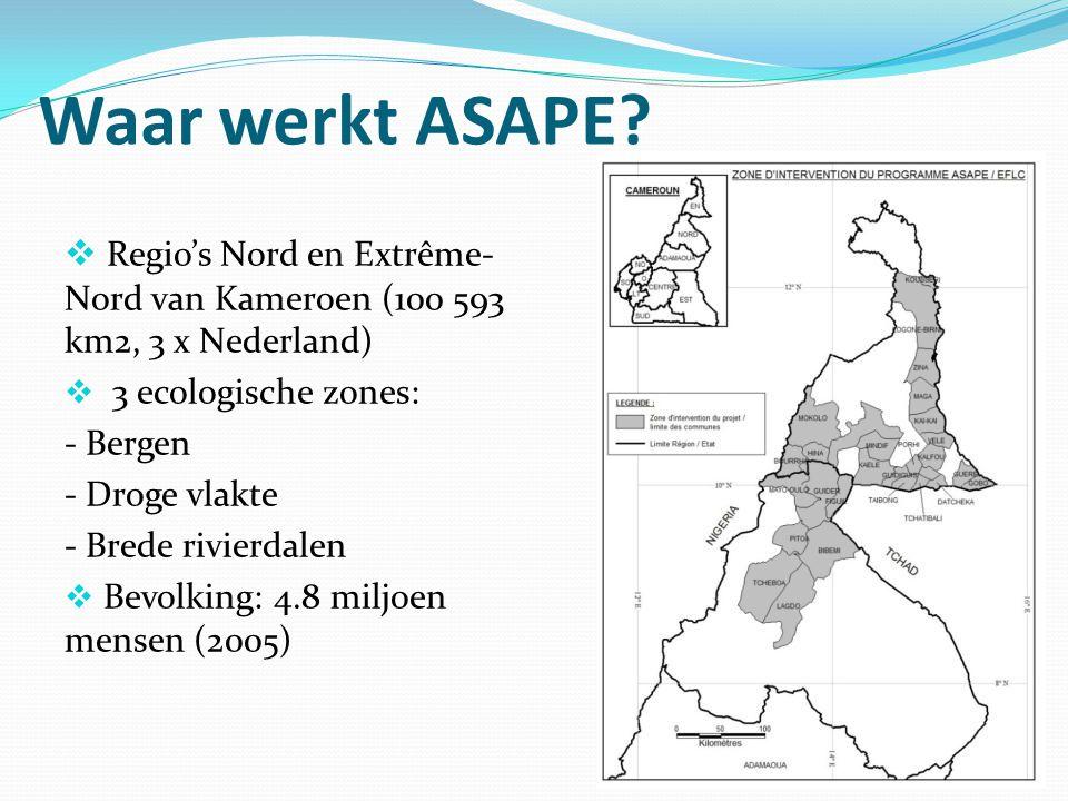 Waar werkt ASAPE?  Regio's Nord en Extrême- Nord van Kameroen (100 593 km2, 3 x Nederland)  3 ecologische zones: - Bergen - Droge vlakte - Brede riv