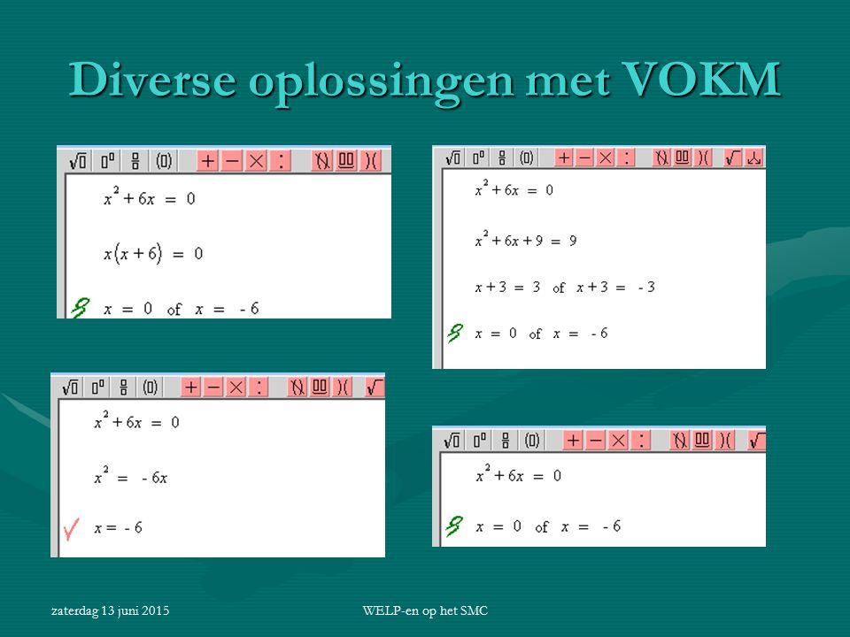 zaterdag 13 juni 2015WELP-en op het SMC Diverse oplossingen met VOKM
