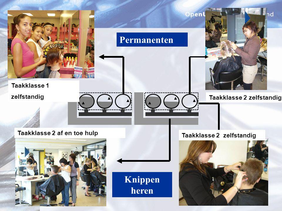 Digitaal ontwikkelingsportfolio S ystematisch T aak E valuatie & P lanning P ortfolio