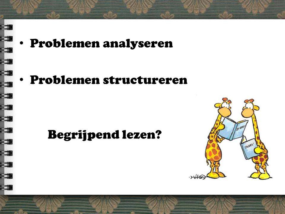 Problemen analyseren Problemen structureren Begrijpend lezen?