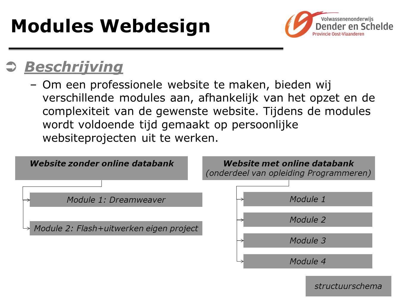 Modules Webdesign  Beschrijving –Om een professionele website te maken, bieden wij verschillende modules aan, afhankelijk van het opzet en de complex