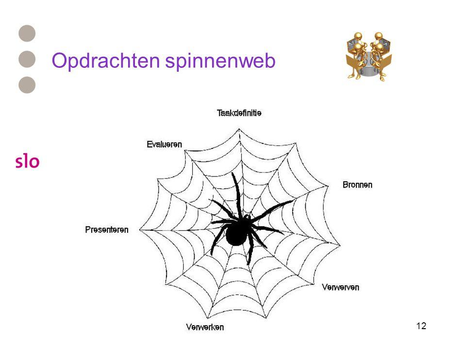 12 Opdrachten spinnenweb