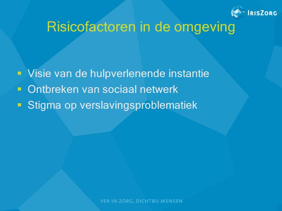 Risicofactoren in de omgeving  Visie van de hulpverlenende instantie  Ontbreken van sociaal netwerk  Stigma op verslavingsproblematiek