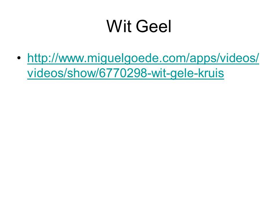 Wit Geel http://www.miguelgoede.com/apps/videos/ videos/show/6770298-wit-gele-kruishttp://www.miguelgoede.com/apps/videos/ videos/show/6770298-wit-gel