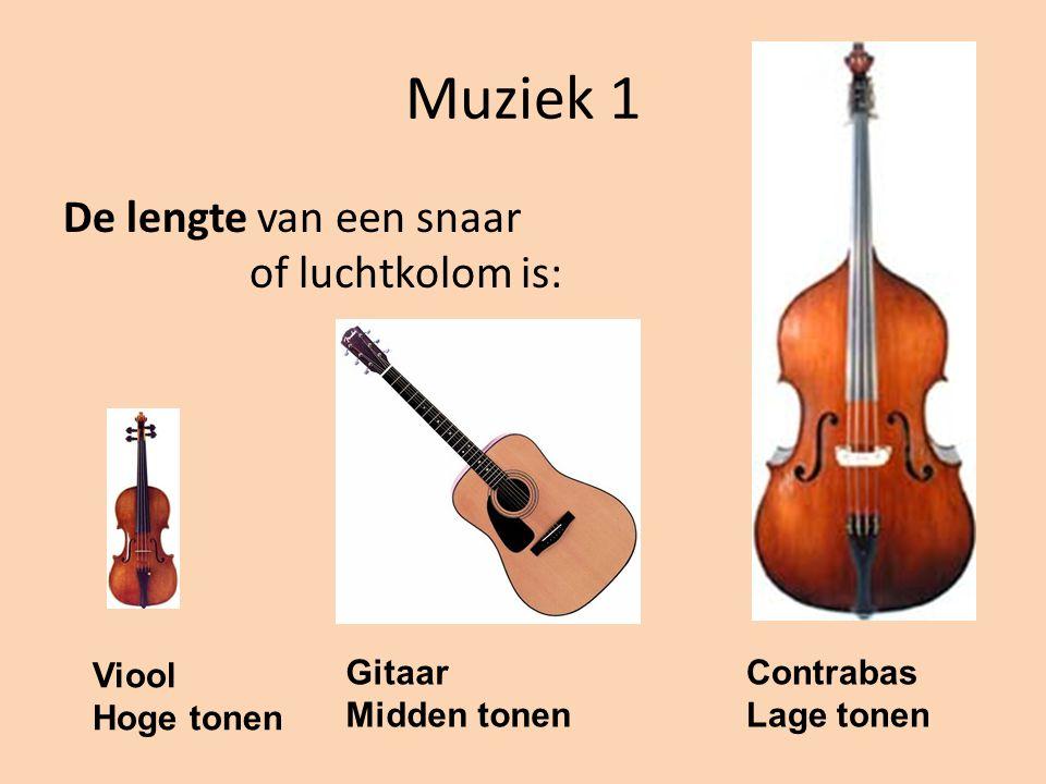 Muziek 1 De lengte van een snaar of luchtkolom is: Viool Hoge tonen Gitaar Midden tonen Contrabas Lage tonen
