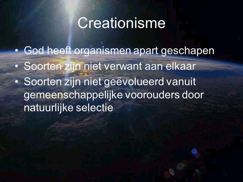 Creationisme God heeft organismen apart geschapen Soorten zijn niet verwant aan elkaar Soorten zijn niet geëvolueerd vanuit gemeenschappelijke vooroud