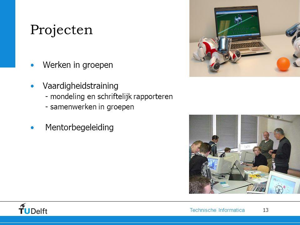 13 Technische Informatica Projecten Werken in groepen Vaardigheidstraining - mondeling en schriftelijk rapporteren - samenwerken in groepen Mentorbege