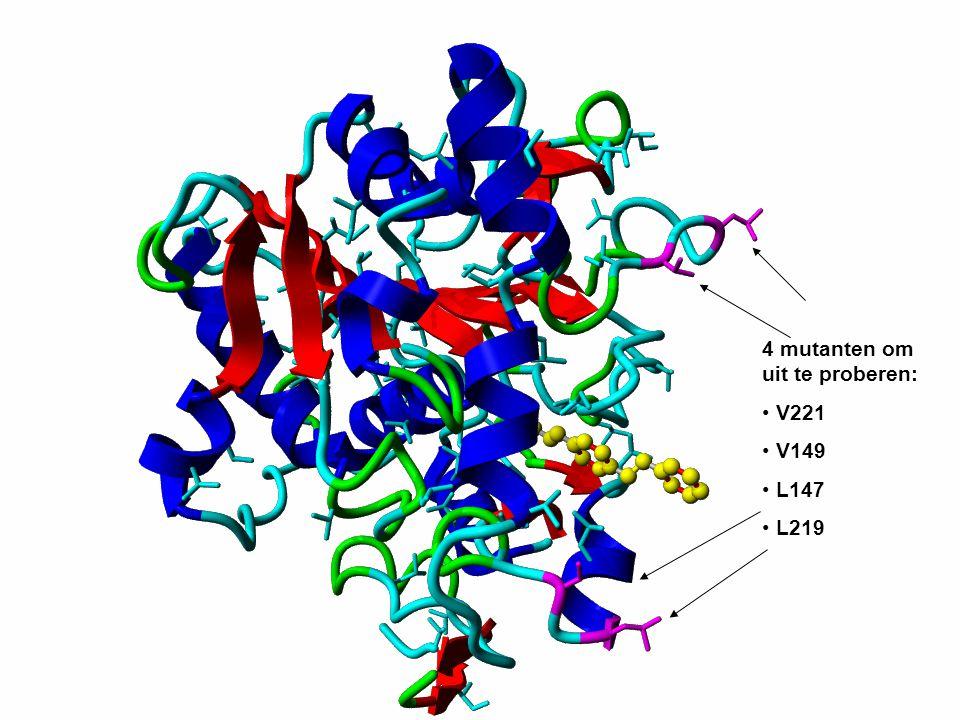 4 mutanten om uit te proberen: V221 V149 L147 L219