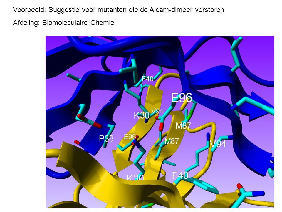 Voorbeeld: Suggestie voor mutanten die de Alcam-dimeer verstoren Afdeling: Biomoleculaire Chemie