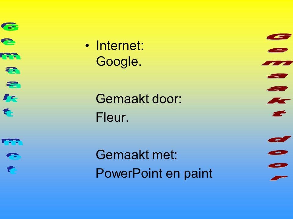 Internet: Google. Gemaakt door: Fleur. Gemaakt met: PowerPoint en paint Ik hoop dat jullie het leuk vonden! Nog vragen?
