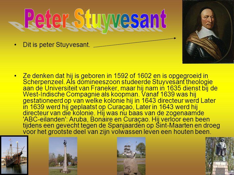 Dit is peter Stuyvesant. Ze denken dat hij is geboren in 1592 of 1602 en is opgegroeid in Scherpenzeel. Als domineeszoon studeerde Stuyvesant theologi