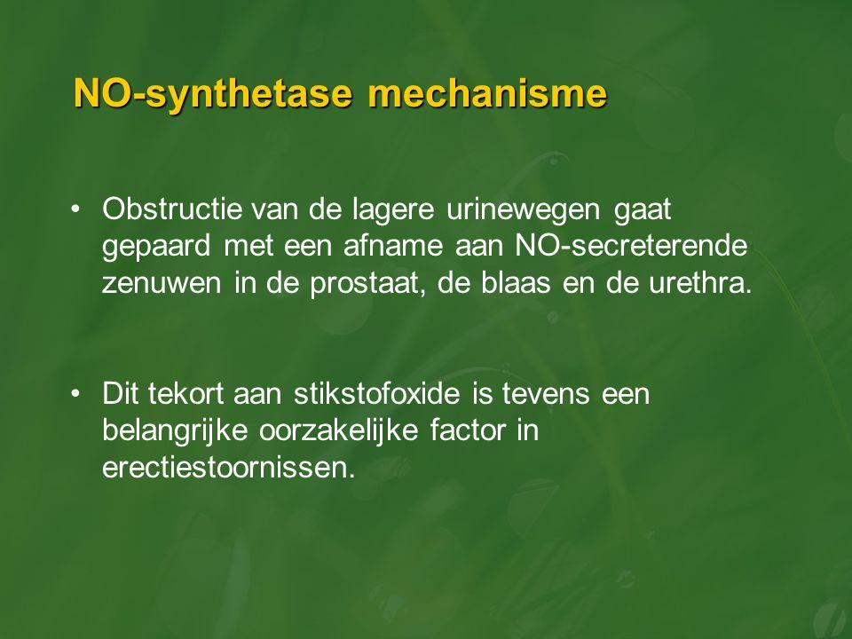 NO-synthetase mechanisme Obstructie van de lagere urinewegen gaat gepaard met een afname aan NO-secreterende zenuwen in de prostaat, de blaas en de ur