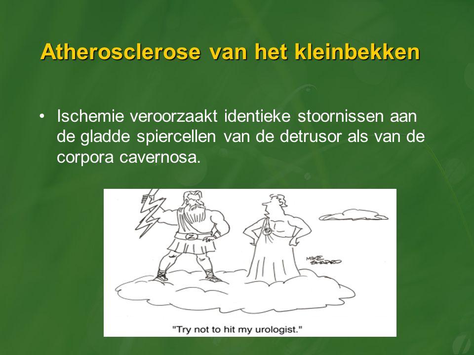 Atherosclerose van het kleinbekken Ischemie veroorzaakt identieke stoornissen aan de gladde spiercellen van de detrusor als van de corpora cavernosa.