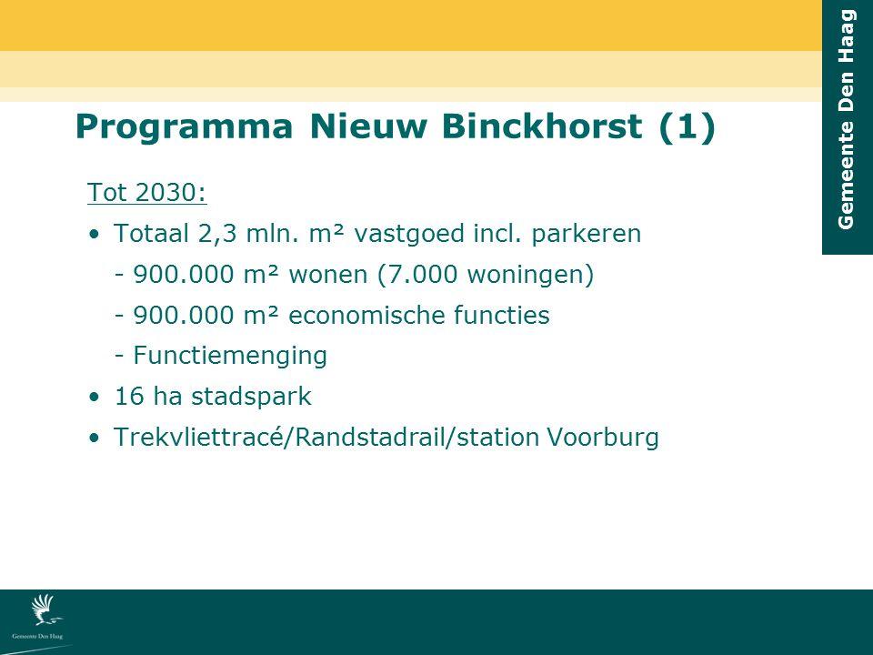 Gemeente Den Haag 7.000 woningen (nu 311) 200.000 m² kantoren nieuw + 275.000 m² handhaven 65.000 m² bedrijfsruimte nieuw + 130.000 m² handhaven 65.000 m² stedelijke-/wijkvoorzieningen 65.000 m² grote (internationale) publiekstrekker 60.000 m² internationaal programma Totaal 2,3 mln.
