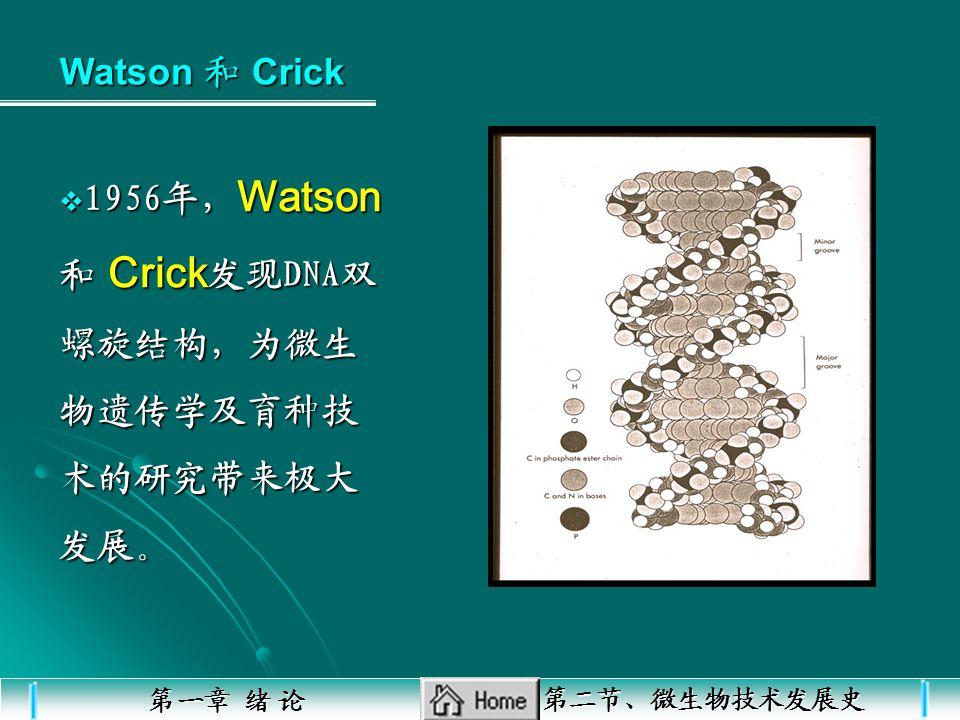 J.D.Waston, H.F.C.Crick 发现 DNA 双螺旋模型 分子生物学发展阶段(成熟期)