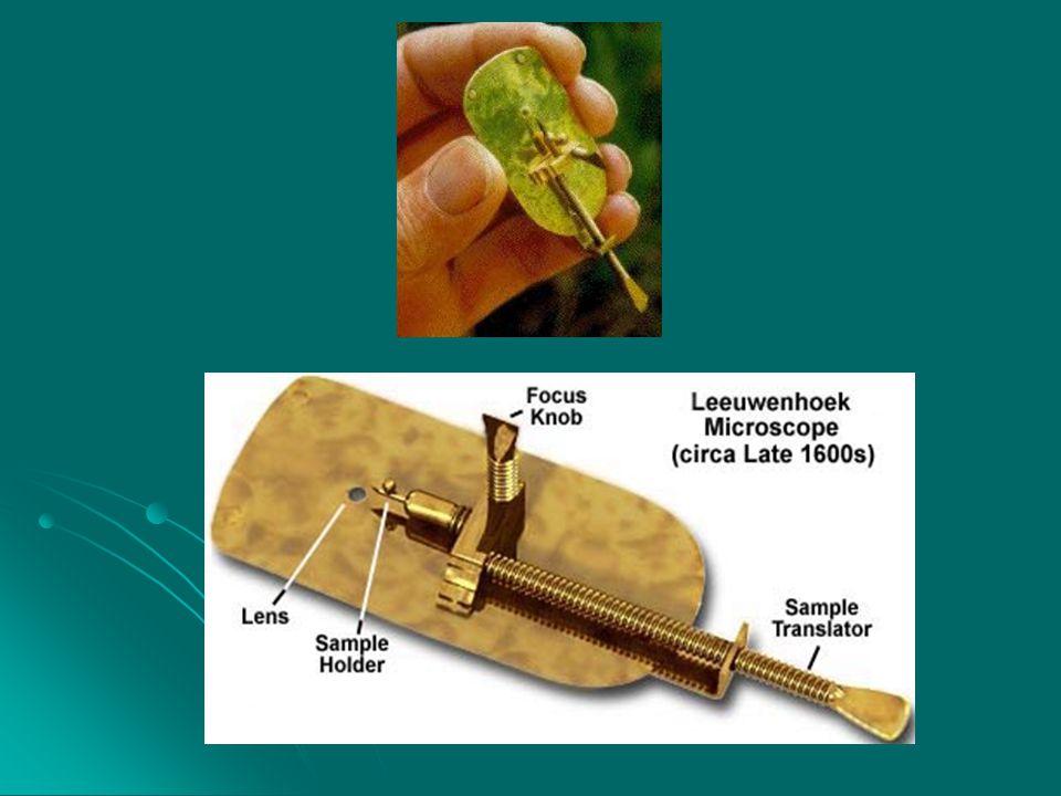 列文虎克( Leewenhoch,1632-1723 ) —— 微生物形态学发展阶段  荷兰业余科 学家, 1676 年, 一生 制作了 419 台 显微镜;  荷兰业余科 学家, 1676 年, 用自磨镜片创 造了一架能放 大 266 倍的原 始显微镜一生 制作了 419 台 显微镜;  发