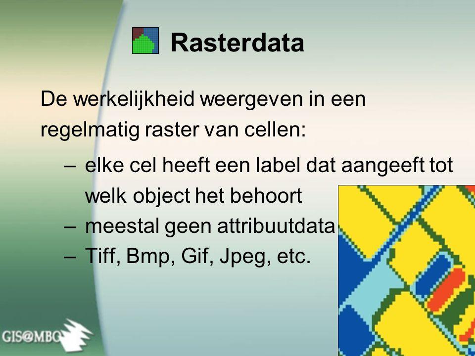 De werkelijkheid weergeven in een regelmatig raster van cellen: – elke cel heeft een label dat aangeeft tot welk object het behoort – meestal geen attribuutdata – Tiff, Bmp, Gif, Jpeg, etc.