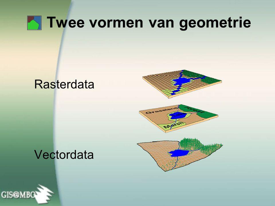 De werkelijkheid opgesplitst in drie basisvormen Lijnen (Straten) Vlakken (Landgebruik) Punten (Winkels)