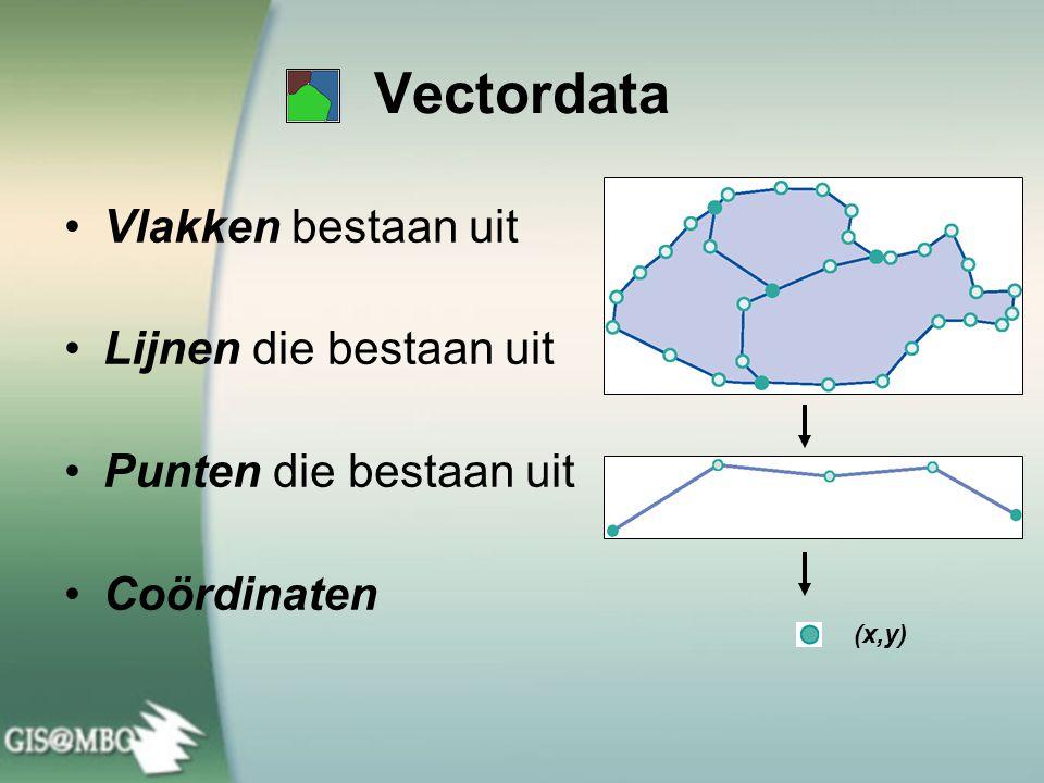 Vectordata: drie datacomponenten Straten Attributen Geometrie Topologie Regels Straten en snelwegen mogen niet snijden