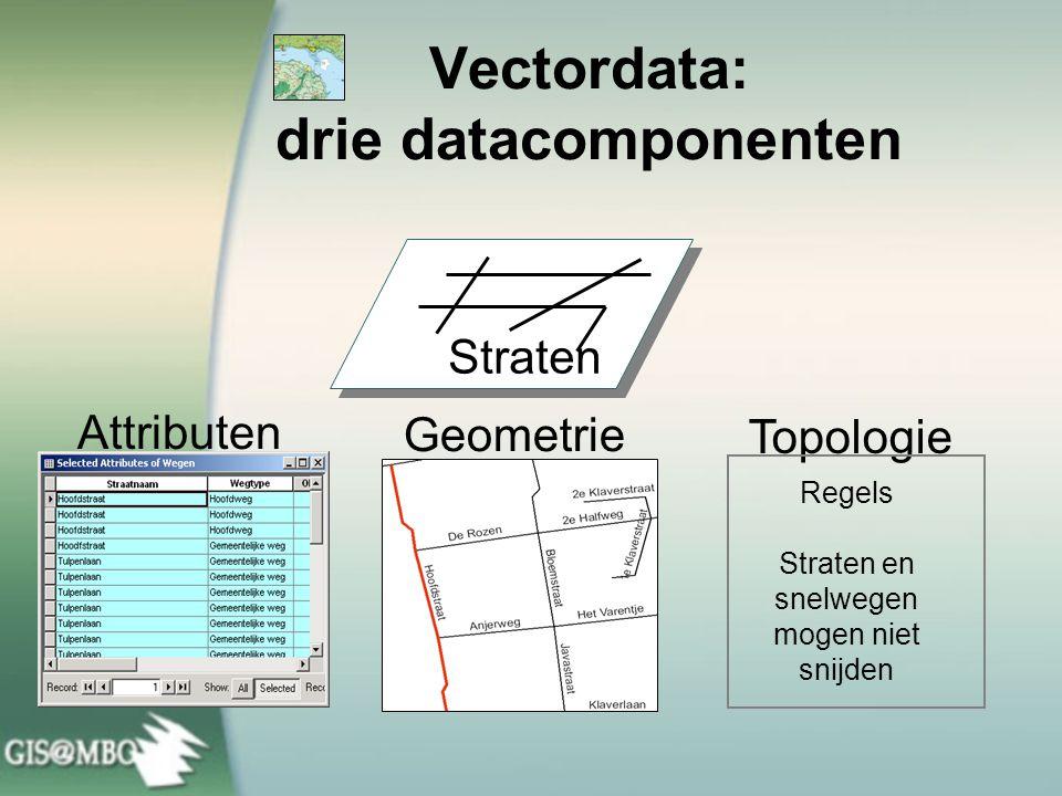 Attributen Beschrijvende informatie over de geografische objecten (features) In tabelvorm te raadplegen Om selecties mee uit te voeren (Select by Attributes)