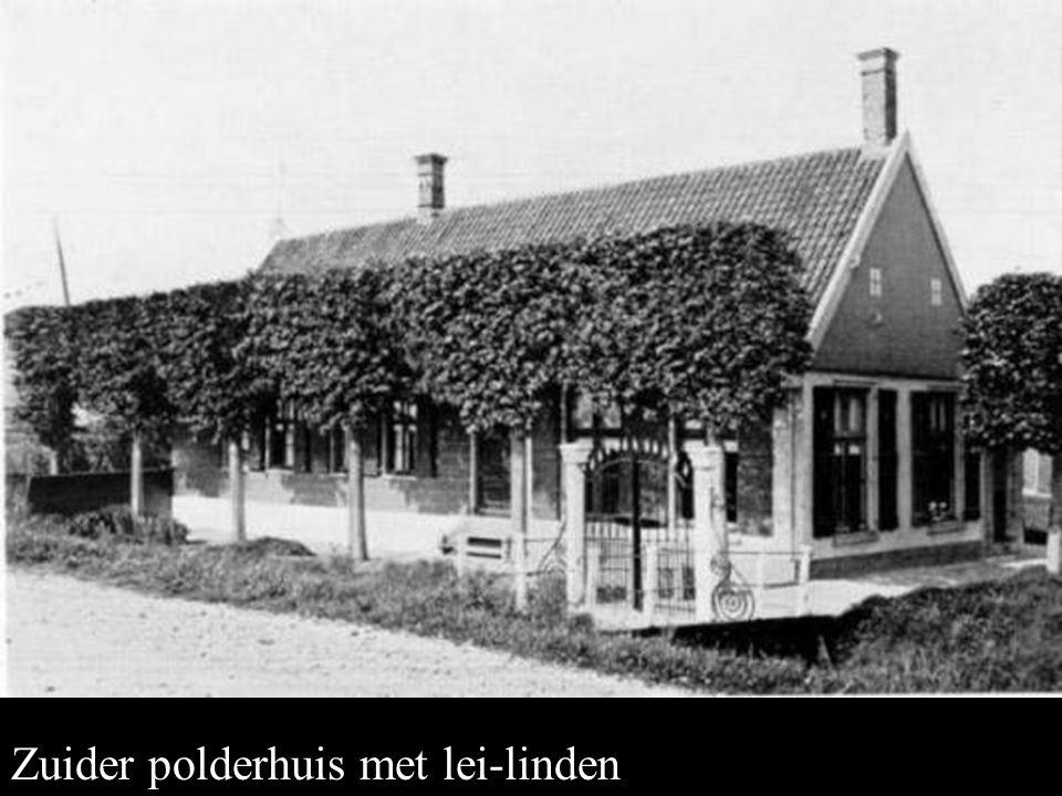 Zuider polderhuis Zuider polderhuis met lei-linden