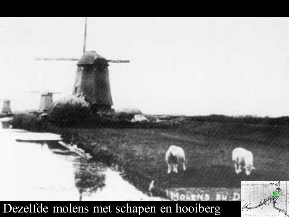Dezelfde molens met schapen en hooiberg
