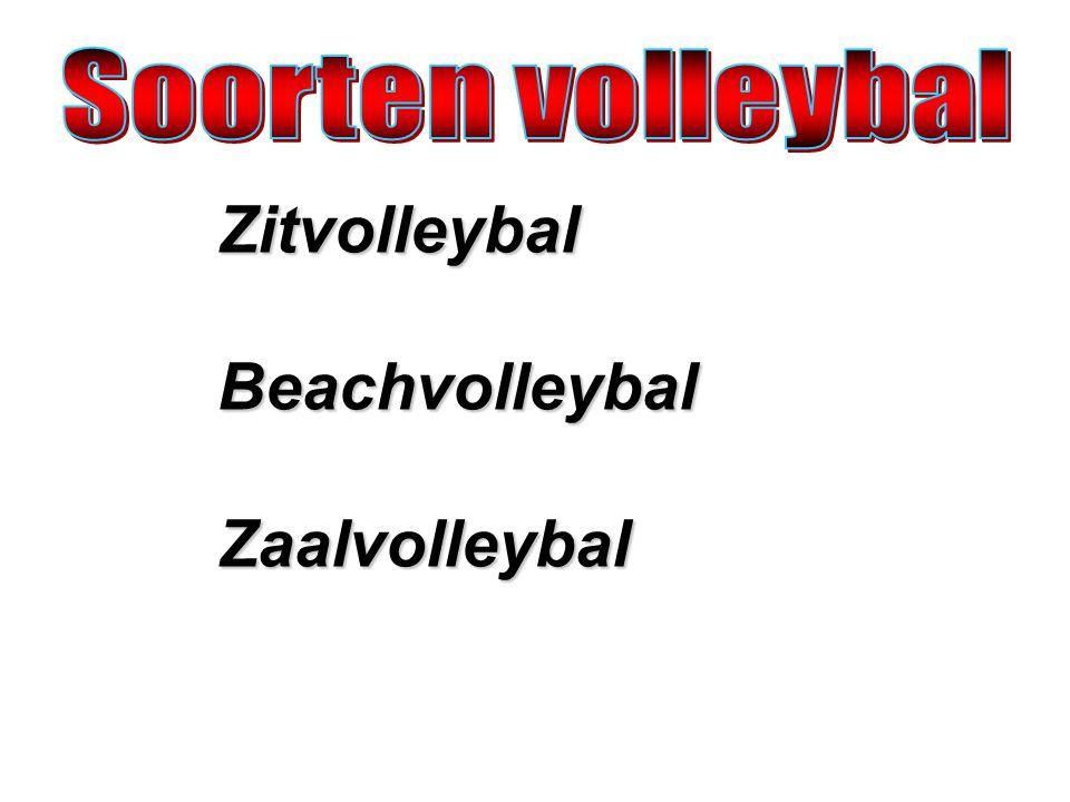 Zitvolleybal is een variant van de zaalsport volleybal.