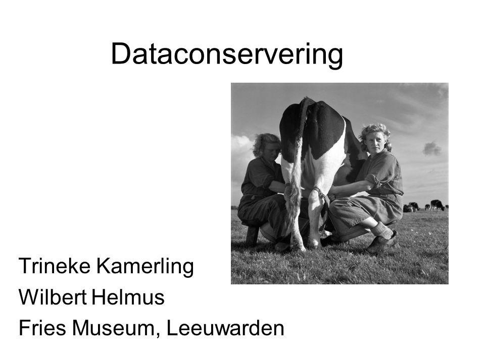 Dataconservering Trineke Kamerling Wilbert Helmus Fries Museum, Leeuwarden
