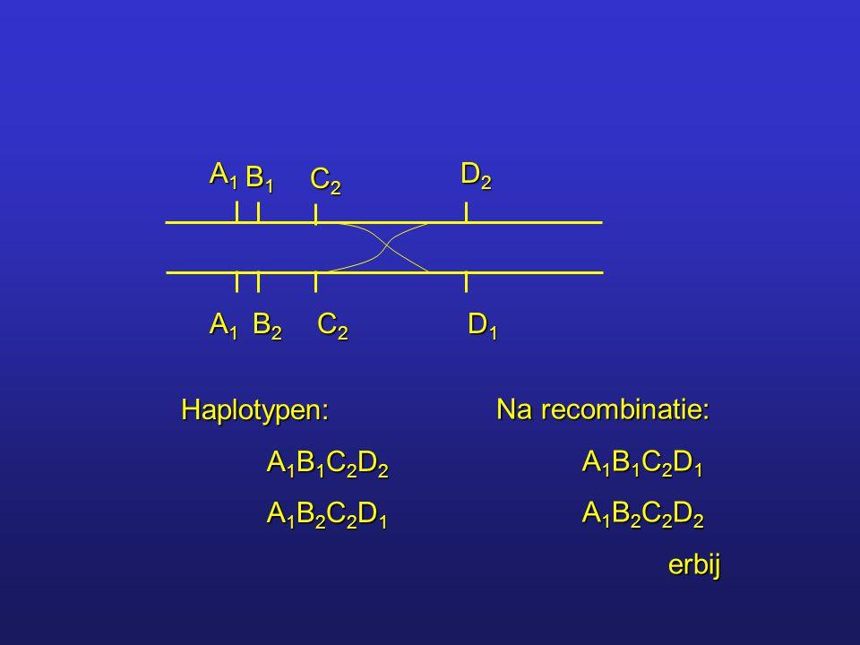 A1A1A1A1 A1A1A1A1 B1B1B1B1 B2B2B2B2 C2C2C2C2 C2C2C2C2 D2D2D2D2 D1D1D1D1 Haplotypen: A 1 B 1 C 2 D 2 A 1 B 2 C 2 D 1 Na recombinatie: A 1 B 1 C 2 D 1 A
