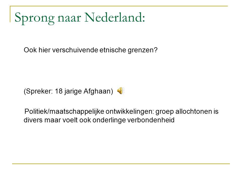 Sprong naar Nederland: Ook hier verschuivende etnische grenzen.