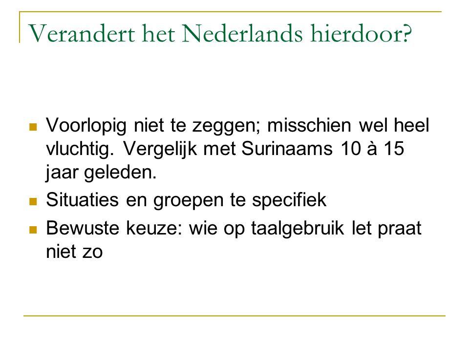 Verandert het Nederlands hierdoor.Voorlopig niet te zeggen; misschien wel heel vluchtig.