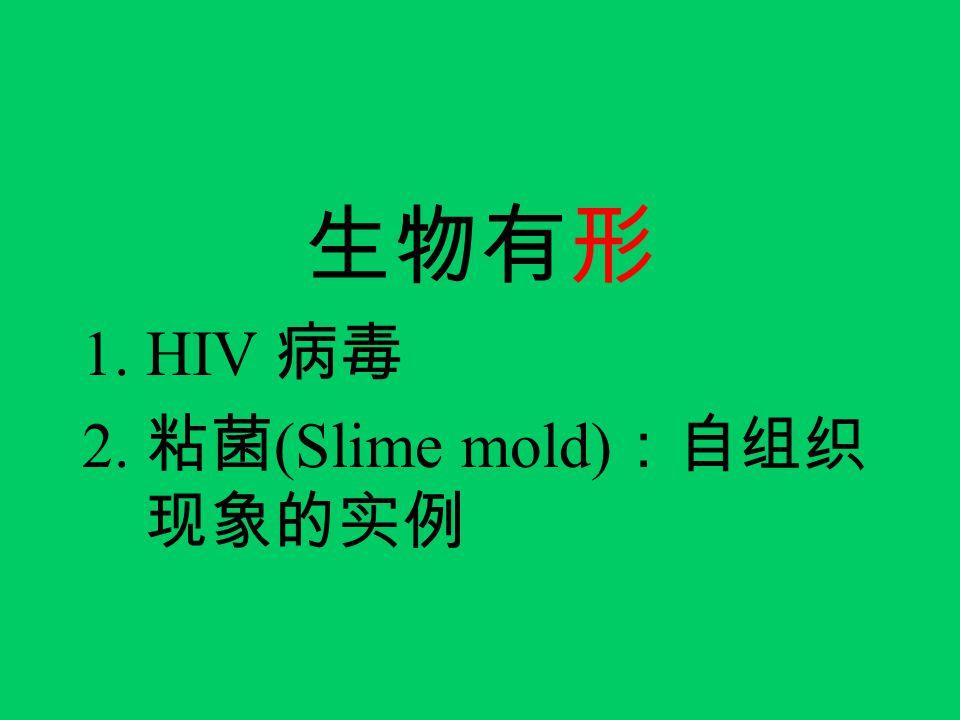 生物有形 1.HIV 病毒 2. 粘菌 (Slime mold) :自组织 现象的实例