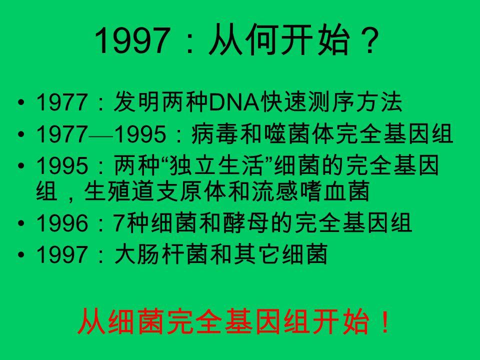 """1997 :从何开始? 1977 :发明两种 DNA 快速测序方法 1977 — 1995 :病毒和噬菌体完全基因组 1995 :两种 """" 独立生活 """" 细菌的完全基因 组,生殖道支原体和流感嗜血菌 1996 : 7 种细菌和酵母的完全基因组 1997 :大肠杆菌和其它细菌 从细菌完全基因组开始!"""