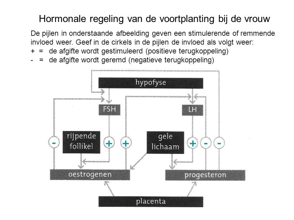 Hormonale regeling van de voortplanting bij de vrouw De pijlen in onderstaande afbeelding geven een stimulerende of remmende invloed weer. Geef in de