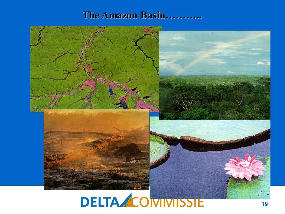 19 © 1989 - FOTOS/ LIANA JOHN The Amazon Basin………..